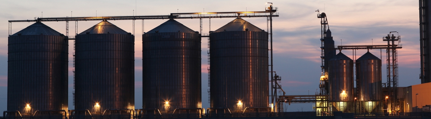 Case Study: Silo Monitoring with Smart Sensor IoT Solution